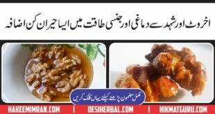 Akhroot aur Honey Ky Desi Totky