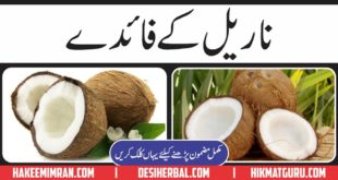 Benefits Of Coconut Nariyal Kay Faiday