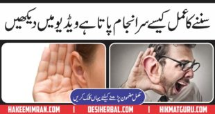Kan (Ears) Kaisy Sunty Hain Video