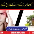 Dard Shaqeeqa ka Ilaj Home Remedy for Migraine 1