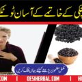 Hiccough Treatment in Urdu Hichki ka Ilaj 1