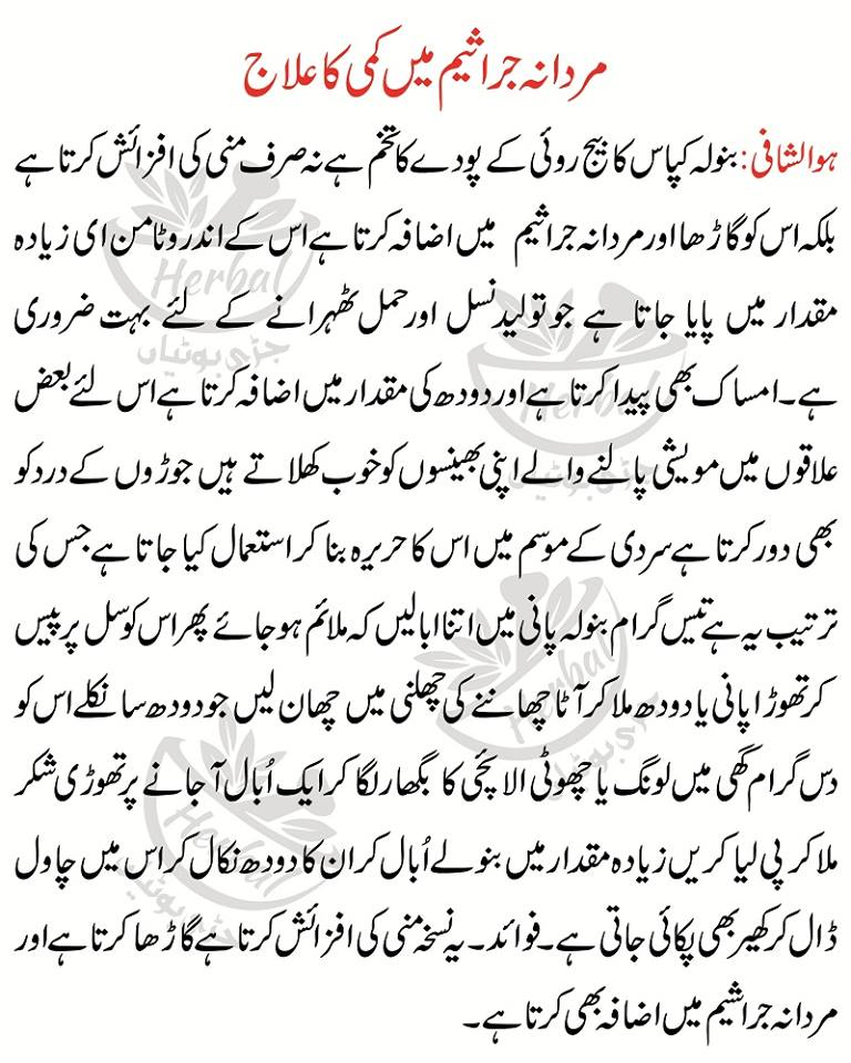 Mani Kay Jaraseem How To increase Sperm Count Naturally in Urdu