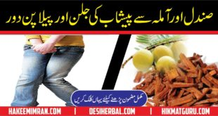 Masany Aur Jigar Ki Garmi Ka ilaj Urinary and Hepatic Problems In Urdu 1