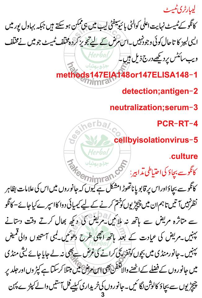What is The Congo Virus and How Can it Affect You In Pakistan (4)