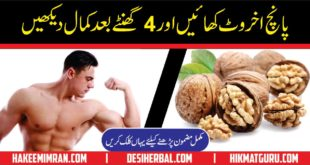 Best Nuskha For Brain And Sex power
