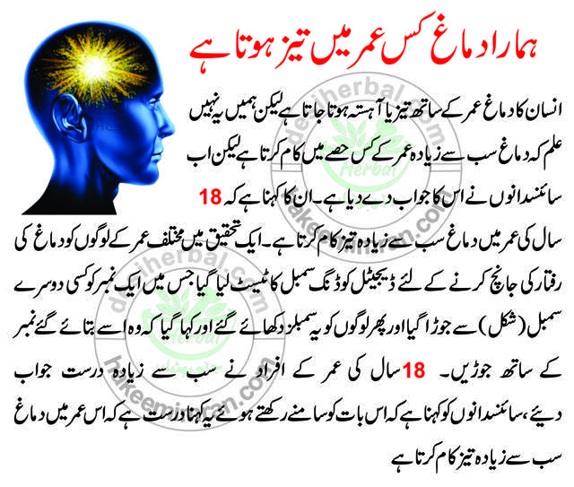 Best Totka for Brain Power in Hindi (2)