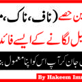 Naaf Main Tail Lagane K Hairat Angez Benefits By Hakeem Imran Kamboh (3)