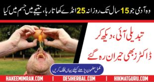 Benefits of Egg in Urdu Anday ka fiada Health Beauty And Power
