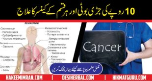 Cancer Ka Desi Ilaj AntiCancer Agents Dhmansa BotiCancer Ka Desi Ilaj AntiCancer Agents Dhmansa Boti