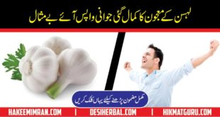 Does Garlic Increases Power Of Erection By Hakeem Imran Kamboh