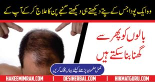 Home Remedies For Hair Fall Treatment in Urdu By Hakeem Imran Kamboh