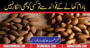 Almonds Health Benefits in Urdu - Badam Health Benefits