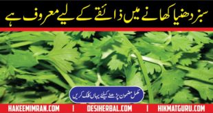Dhaniya ke Fayde Benefit of Coriander in Urdu