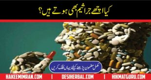Is bacteria can be helpful to humans in urdu