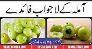 Amla (Gooseberry) Kiya hy Aur Amla Benefits in Urdu