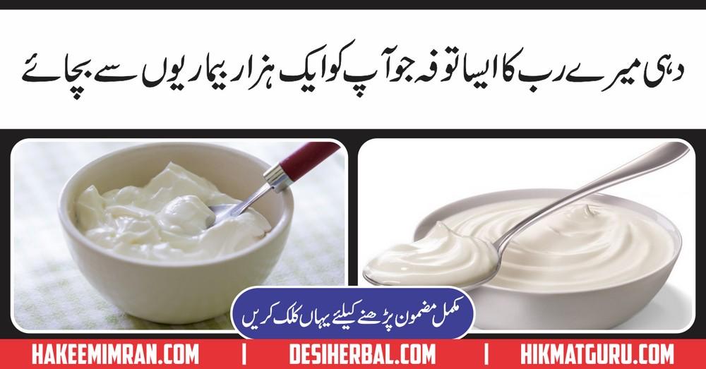 Dahi Yogurt Kay Lajwab Faiday