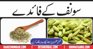 Benefits Of Fennel Seeds (Saunf) in Urdu