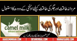 Oontni Kay Doodh kay Faiday (Camel Milk Benefits) in Urdu