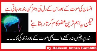 Which Parts Of the Human Body Will Remain Alive After Death in Urdu