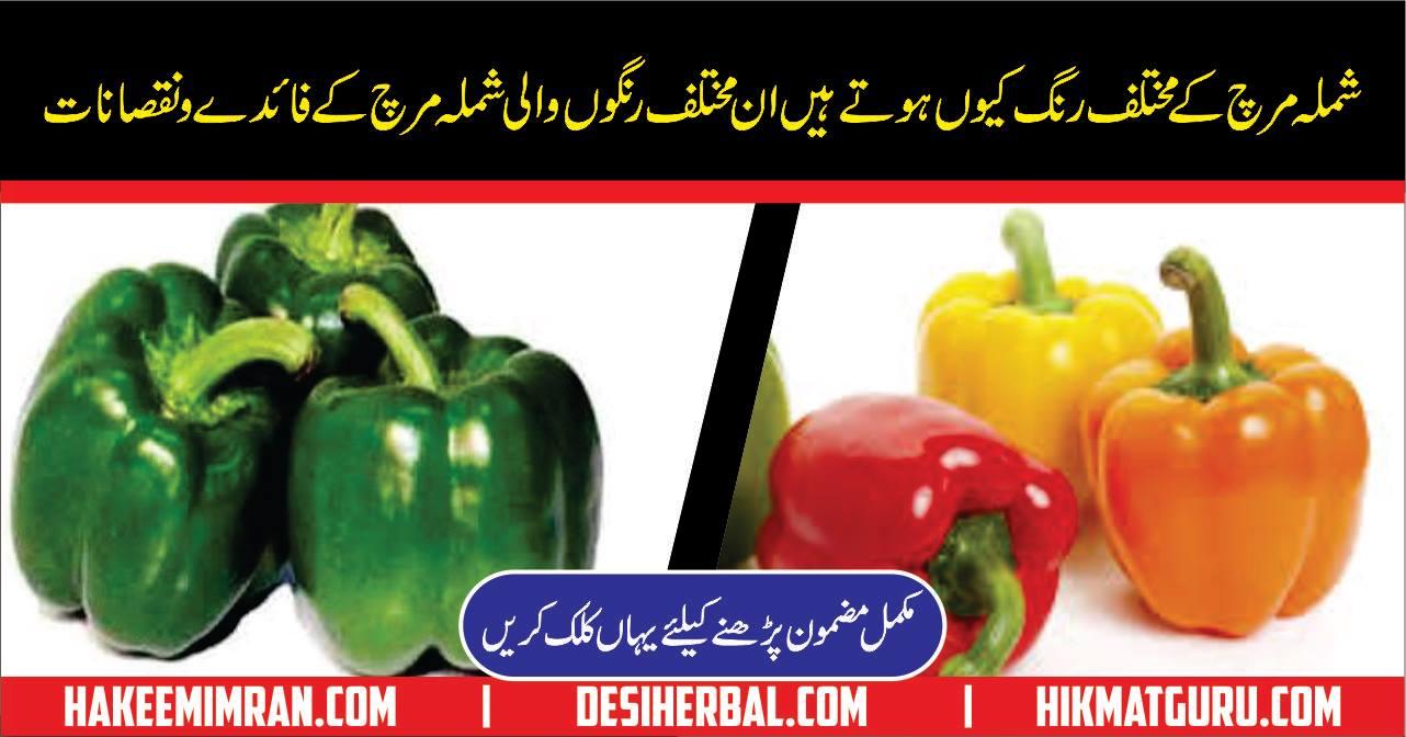 Shimla Mirch Kay Faidy Benefits In Urdu