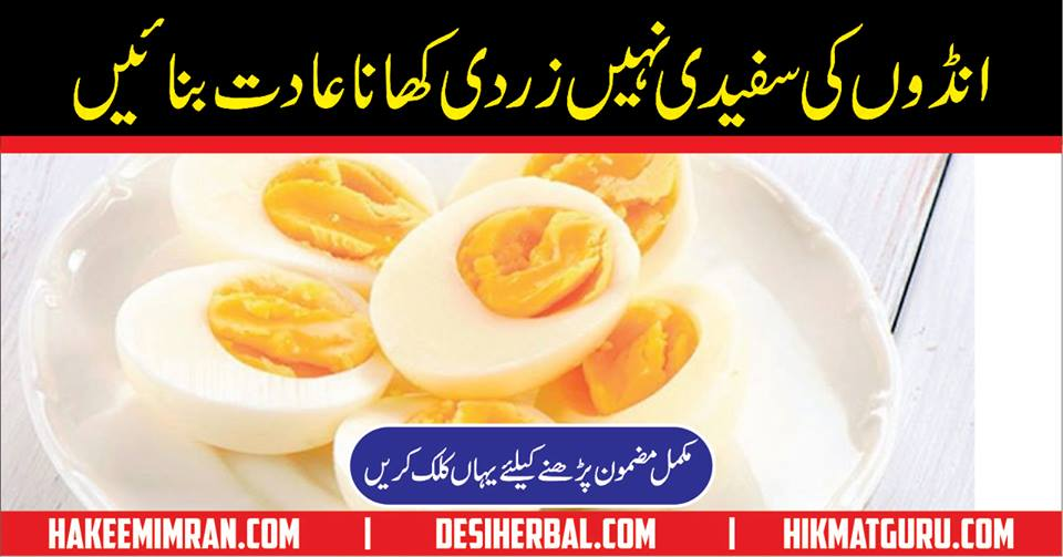Anda zayada Mufeed Hai Ya Zardi In Urdu
