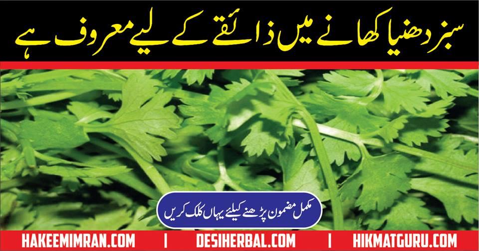 Dhaniya ke Fayde Benefit of Coriander in Urdu