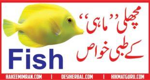 Fish Benefits Machli Khane Ke Fayde Fish Benefits In Urdu مچھلی کے فائدے