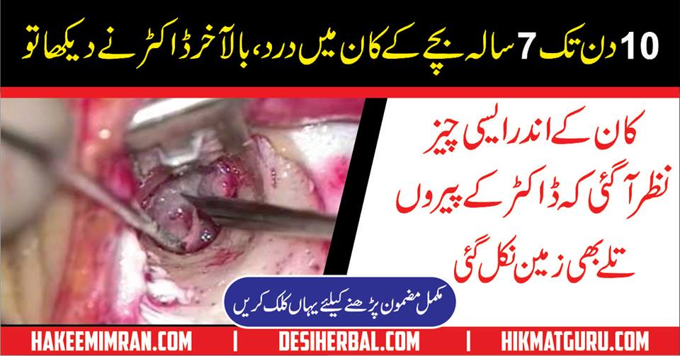 Kaan Ki Bimariyan ( Ear Problems) Gharelu Health Tips In Urdu