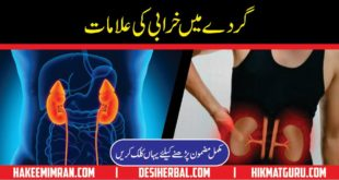Kidney Diseases Information In Urdu Kidney Ki Bimari