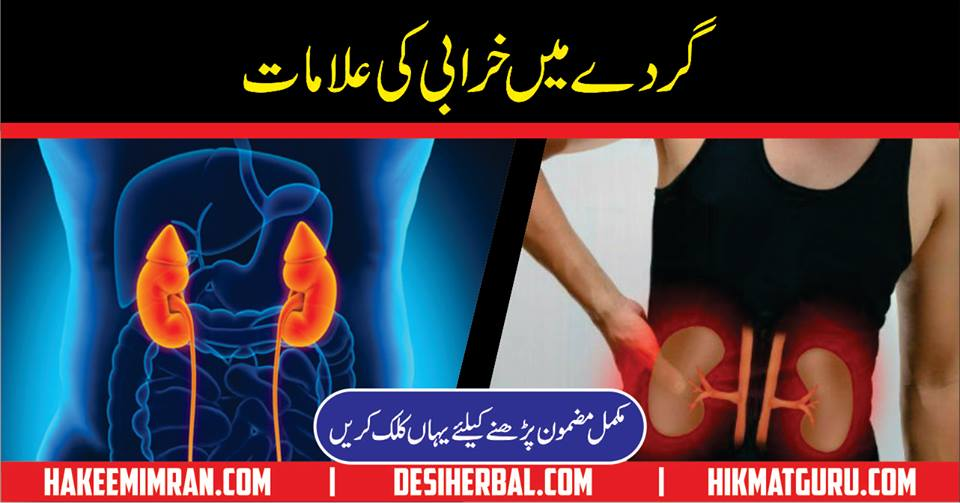 Kidney Diseases Information In Urdu Kidney Ki Bimari