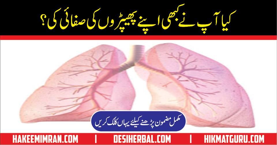 Lungs phephroon Ki Safai Ka Nuskha