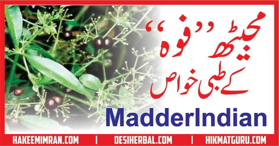 Majeeth (Madder indian) Benefits in urdu مجیٹھ کے طبعی خواص