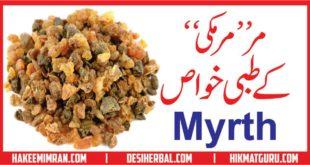 Murmaki (Myrth) Benefits in urdu مرمکی کے فائدے