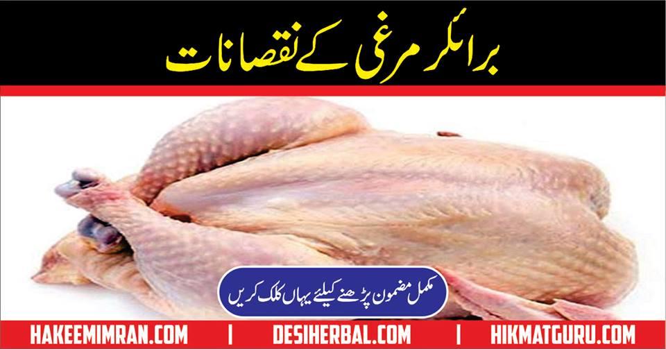 Side Effects of Broiler Chicken in Urdu