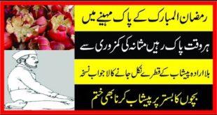 Bister Per Peshab Karny Waloon Ky Wasty Desi Elaj||Child Bedwetting cure|Hakeem imran Kmaboh