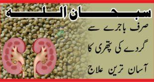 سبحان اللہ ۔ ۔ ۔ صرف باجرے سےگردے کی پتھری کا آسان ترین علاج